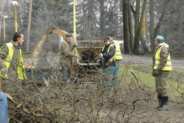 Omladzovacia kúra. Čistenie parku od starých stromov na Komenského ulici sa skončilo. Nadišiel čas na jeho omladenie.