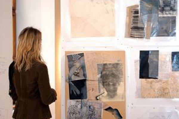 Výstava pod názvom Nenápadné médium (podoby súčasnej kresby) trvá do 3. mája.