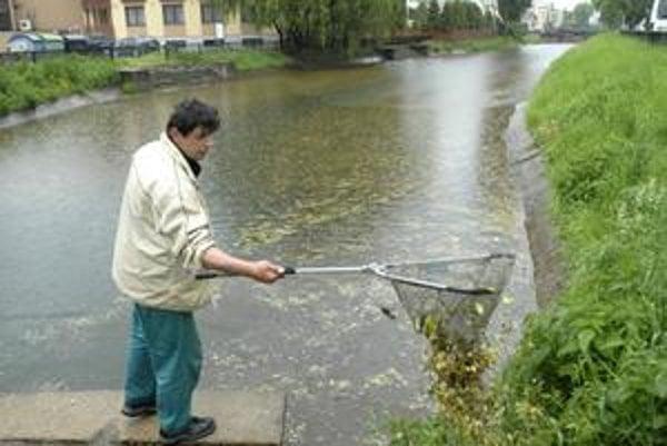 Čistenie náhonu. Napadané lístie musia z vody pozberať, aby sa potrubie neupchalo.