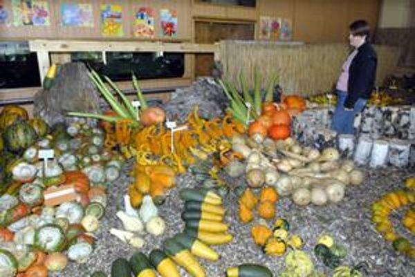 Tekvicoparáda. Príroda prináša zavše prekvapenia. Na výstave tekvíc a netradičných plodín možno obdivovať rôznofarebnosť, veľkosť i dekoratívnosť.
