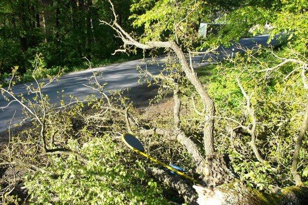 Spadnutý strom. Zasiahol zastávku SAD aj časť komunikácie.