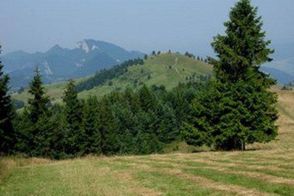 Hrebeň Malých Pienin. Tie patria k najväčším lákadlám severu Východného Slovenska.