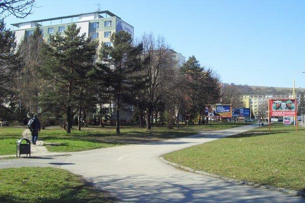 Výrub stromov na Levočskej. Ustúpia mostu a rozšíreniu cesty.