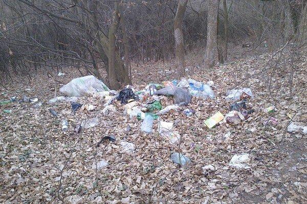 Skládka na Sídlisku II. Povaľuje sa tam komunálny odpad.