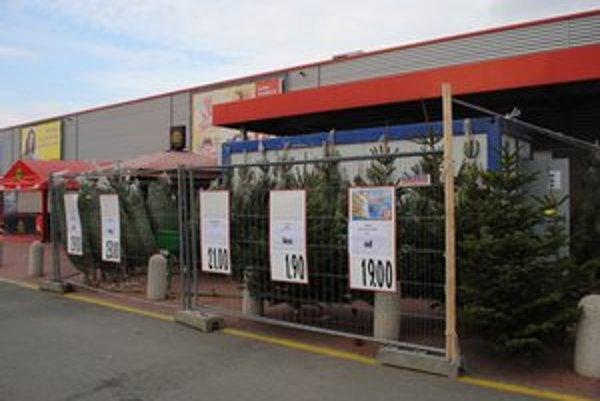 Vianočné stromčeky. V ponuke sú smreky, borovice a jedle.