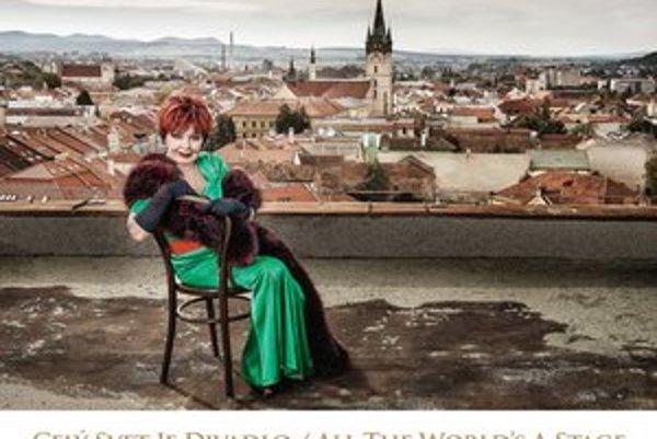 Na dvanástich fotografiách predstavil fotograf Ján Štovka umelecký kolektív divadla.