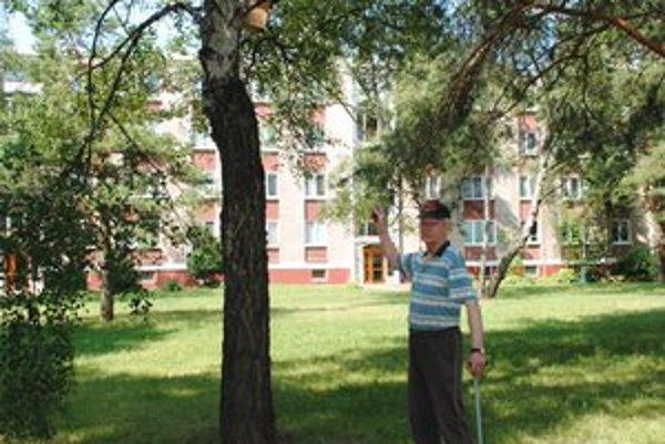 Búdky na stromoch. Všetky vyrobil František Gruška.