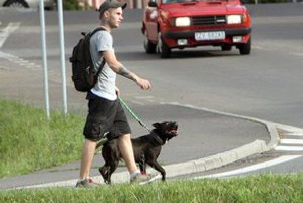 Evidencia psov v Prešove sa rozrástla.