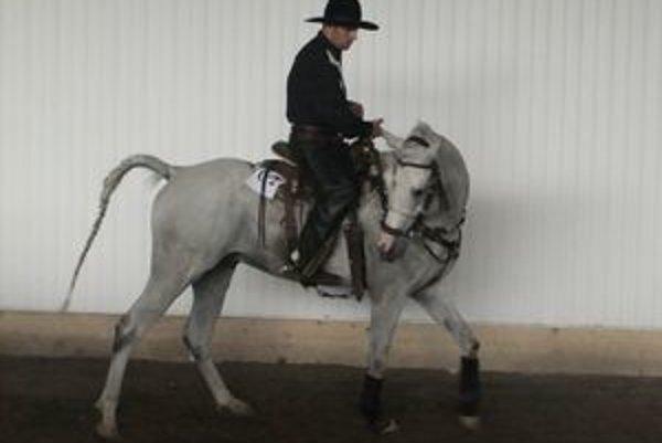 Jazdci. Výkony ich koní si na rodeo prišli pozrieť stovky zvedavcov.