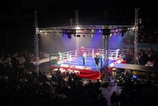 Momentka z minulého ročníka. Keďže tento bude patriť MMA, boxerský ring vystrieda osemhranná klietka (tzv. octagon).