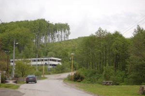 Les v Zlatej Bani. Ľudia majú obavy z ťažby dreva.