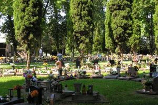 Urnový háj. Pohreb s kremáciou uprednostňuje čoraz viac rodín.