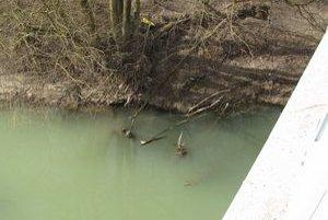 Mŕtveho muža našli v rieke Onadava pri Lomnom.