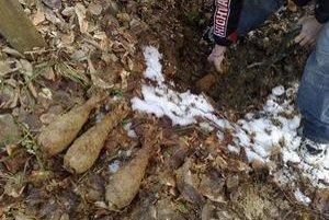 Nález. Na jednom mieste našli až 30 kusov delostreleckých granátov.