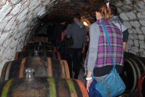 Pivnice. Tokajské víno dozrieva v tuftových pivniciach, ktoré postavili miestni obyvatelia ešte počas tureckých vpádov v 16. a 17. storočí.