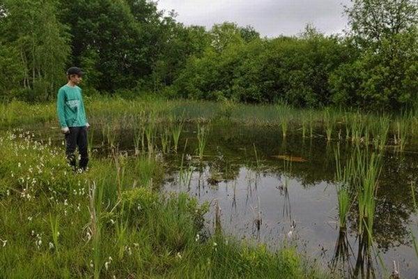 Zachovanie mokradí je jedna z priorít v rámci projektu záchrany ohrozených živočíšnych druhov.