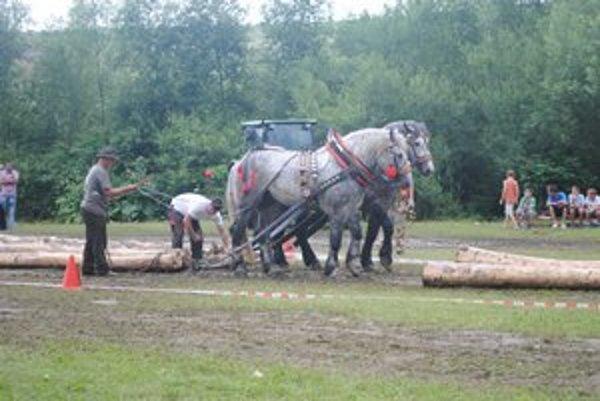 Furmanské preteky. Furmani i kone ukázali, čo v nich je.