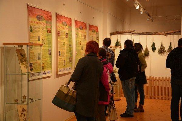Výstava oliečivých rastlinách. Hostia pozorne čítali zaujímavosti.