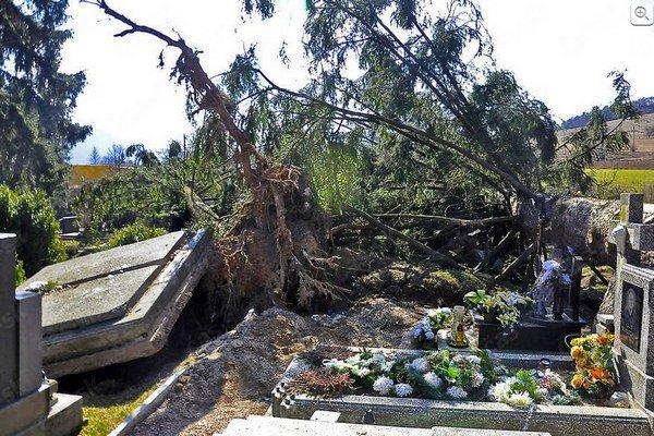 Odstraňovanie kalamity. Na cintoríne bolo veľa práce. Škody poisťovňa preplatila.