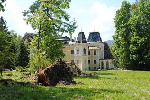 Park v Betliari. Silný vietor povyvracal stromy.