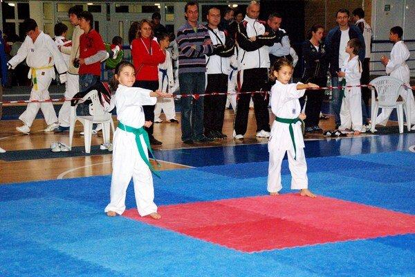 Po štyroch rokoch. TKD Hakimi Rožňava organizoval slovenský šampionát v taekwondo už v roku 2010.