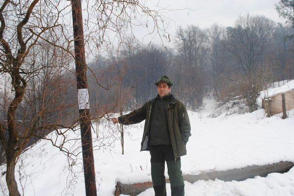 Riaditeľ mestských lesov. Zohľadnili aj rezervu na výsadbu.