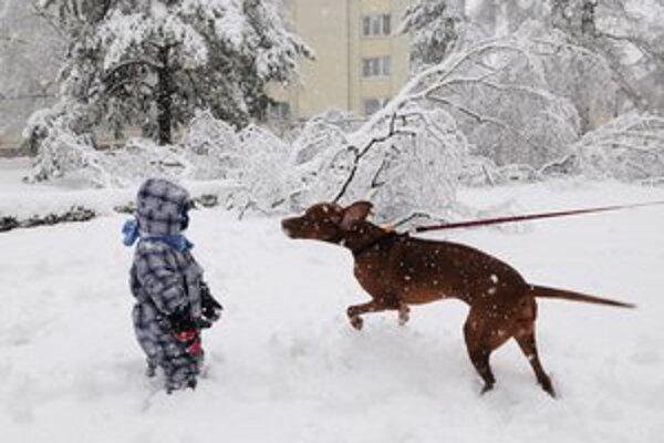Deti si sneh užívajú.