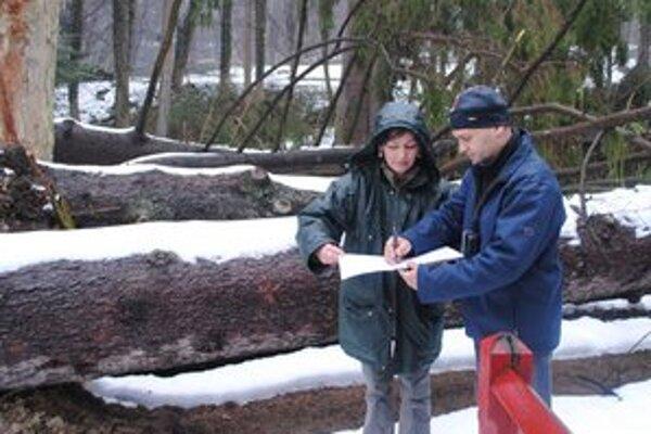 B. Nagyová a V. Sobota pri hodnotení súčasného stavu stromov.