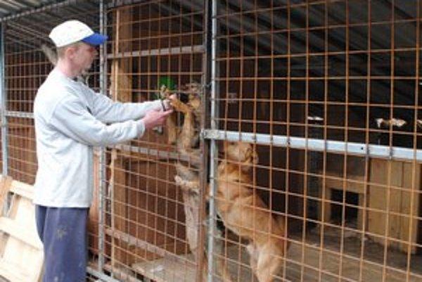 Gabriel Raši. Stará sa o všetkých psíkov s veľkou láskou.