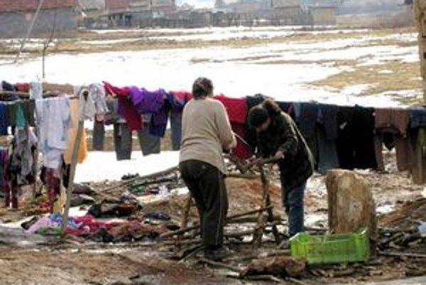 Haluzina. Mnohé rodiny ňou počas zimy vykurujú svoje príbytky.
