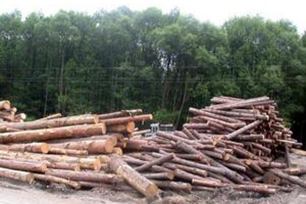 Ťažba dreva. Je hlavným príjmom mestských lesov.