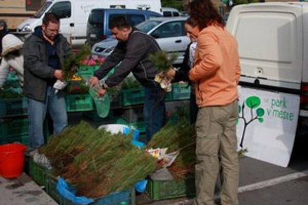 Aktivisti z OZ Park v meste. Na verejných miestach a sídliskách plánujú vysadiť stromy, ktoré pretvoria a zveľadia Bardejov.