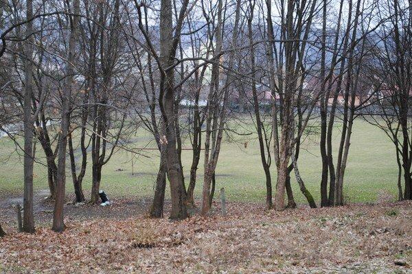 Škvarové ihrisko. V parku je už 70 rokov.