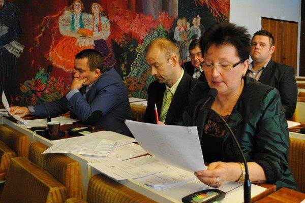 Poslankyňa Reháková upozornila na vysoký objem priamych dotácií pre rôzne subjekty.