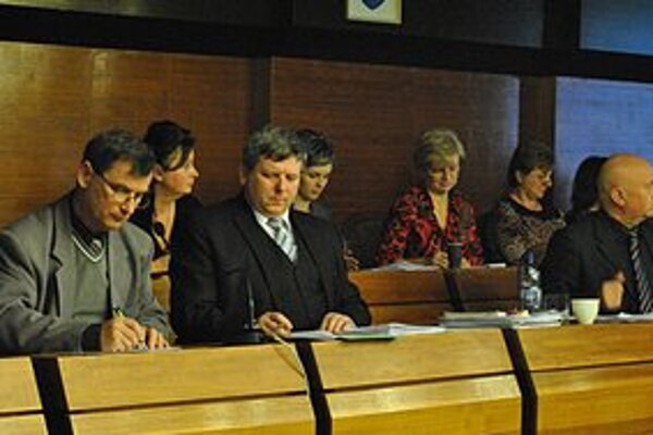 Ján Aľušík (prvý zľava), riaditeľ VPS Snina, o zosuve nevie, s predajom nesúhlasí.