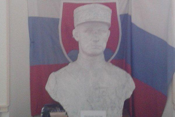 V historickom múzeu v Darney. Busta M. R. Štefánika.