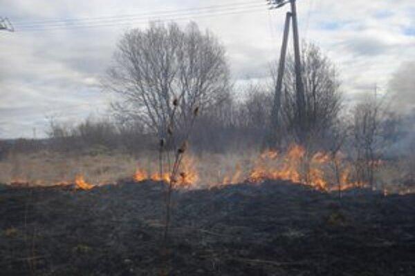 Každodenná realita. Vypaľovanie trávy a suchých porastov zákon zakazuje.
