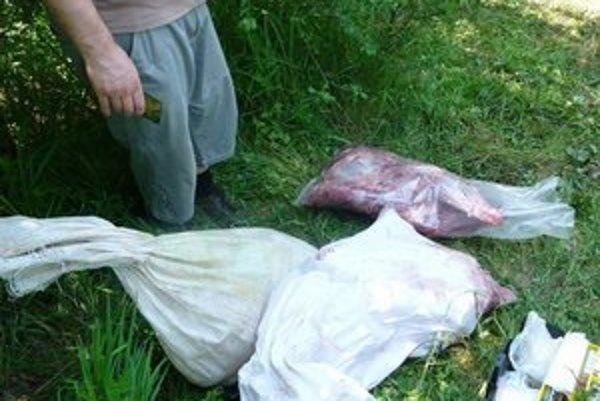 """""""Profíci"""". Mäso z jelenice pytliaci na mieste rozporciovali do vriec. Vyrušil ich poľovník."""