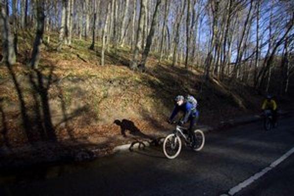Cyklisti schádzali smerom ku Kamenici nad Cirochou od vysťahovanej obce. Je vo vojenskom obvode Valaškovce.