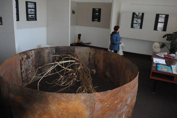 Zuzana Sotáková – Priestorová inštalácia. V malej galérii Mestského kultúrneho strediska v Michalovciach si môžete do 27. februára pozrieť výstavu Zuzany Sotákovej.