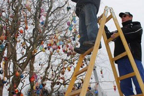 Veľkonočný strom. Vŕbu zdobí 2 633 kraslíc. Obec sa uchádza o zápis do Slovenskej knihy rekordov.