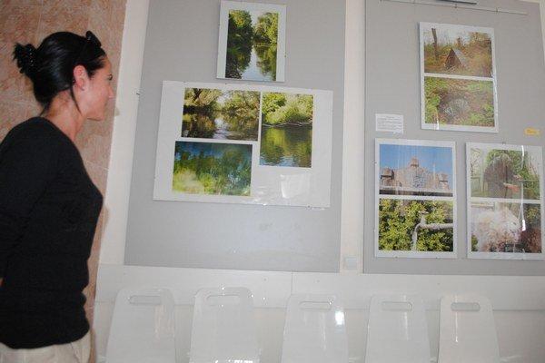 Výstava neprofesionálnych fotografov. Snímky 11 fotografov si môžete pozrieť v galérii ZOS v Michalovciach do 20. mája.