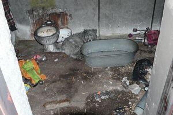 Stará stanica. Hasiči našli ženu ležať v bezvedomí na zemi. Vedľa nej bol pes, ktorý sa po príchode hasičov schoval za vaňu.