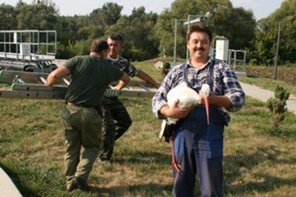 Zranený bocian. Ochranári ho vytiahli z odkaľovacej nádrže ČOV.