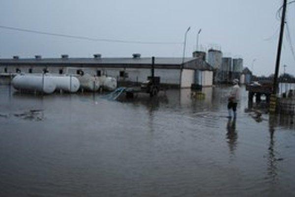 Voda zaplavila hydinovú farmu