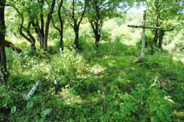 Vojenský cintorín v Ňagove. V roku 2008 sa po dlhých desaťročiach dočkal prvej brigády. Pietne miesto je už ale znova v žalostnom stave.