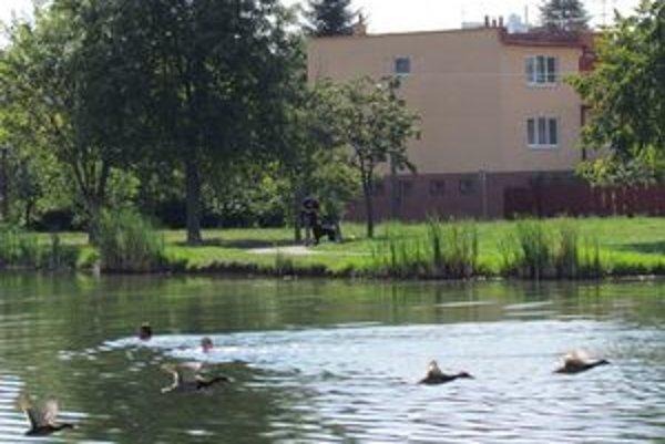 IBV pri jazierku Baňa. Je to vyhľadávaná tichá lokalita.