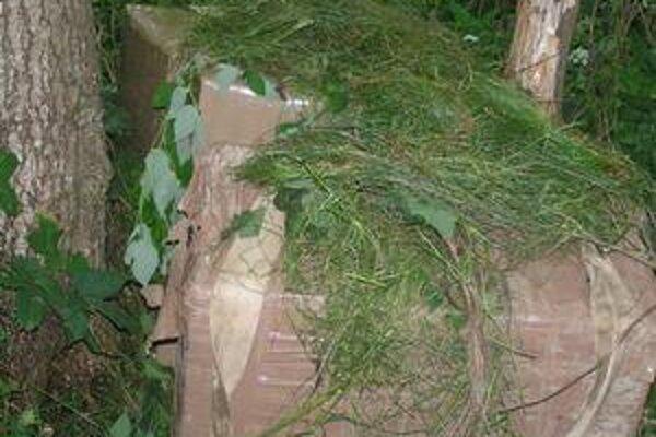 Kartóny cigariet. Ukrajinci sa ich snažili na poslednú chvíľu zamaskovať trávou.