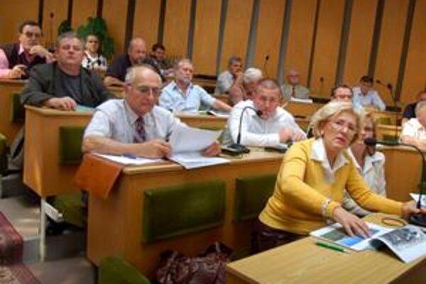 Nedajú ani cent. Návrhy poslancov na pridelenie dotácií nezískali nadpolovičnú väčšinu hlasov.