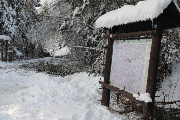 Súčasný stav. Slovenský raj v znamení popadaného dreva a množstva snehu.